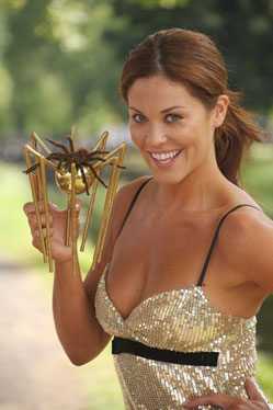"Newbridge Silverware have won the 2007 Golden Spider Award for ""Best e-Business Website\"""